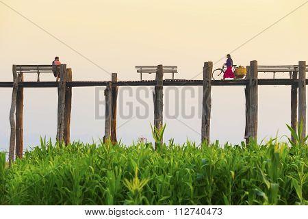 Amarapura, Myanmar - Febbruary 19, 2015 : An Unidentified Man With A Bike Walks On U Bein Bridge On