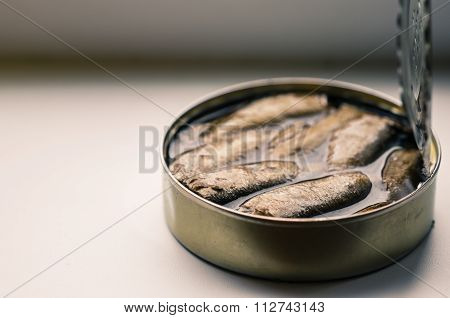 Open Can Of Sardines, Sprats And Other Fish