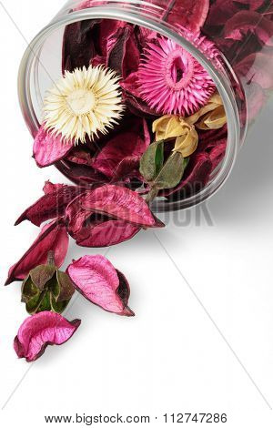 Colorful Dried Flowers Spilling Out From Plastic Container