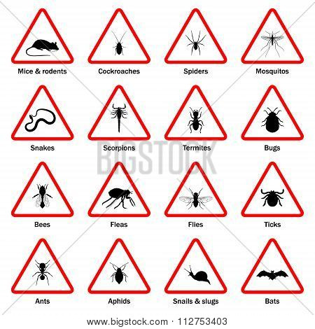 Pest and insect control icons set.