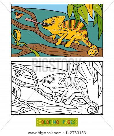 Coloring Book For Children (chameleon)