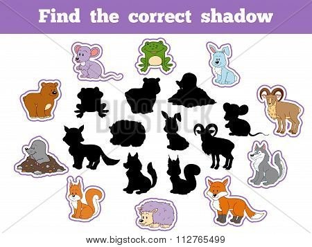 Find The Correct Shadow (forest Animals)