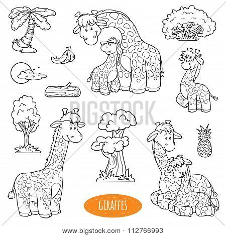 Set Of Cute Animals And Objects, Vector Family Of Giraffes