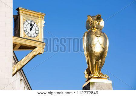 Golden Owl, Civic Hall, Leeds