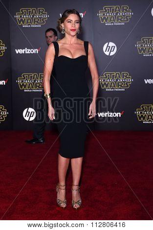 LOS ANGELES - DEC 14:  Sofia Vergara arrives to the