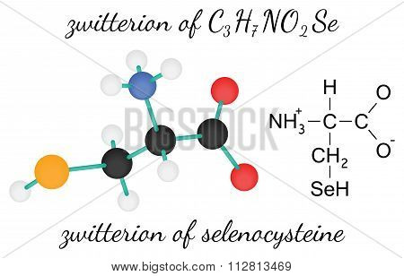 C3H7NO2Se zwitterion of selenocysteine amino acid molecule