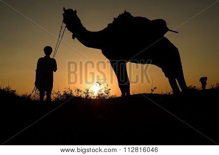 Silhouette Of The Camel Trader Crossing The Sand Dune During Sunset  At Camel Base Camp.