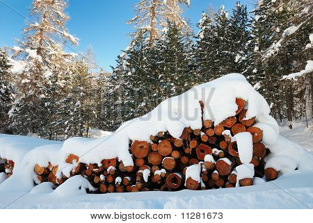 Firewood under the snow