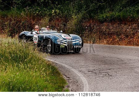 JAGUAR C Type 1953