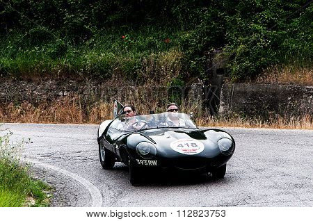JAGUAR D - Type 1956