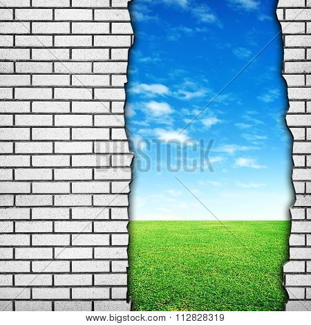 meadow background with crack brick wall