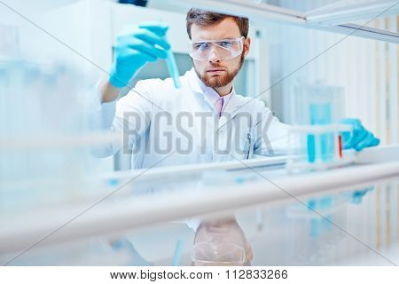 Modern chemist looking at liquid in flask in laboratory