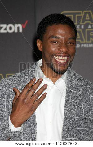 LOS ANGELES - DEC 14:  Chadwick Boseman at the