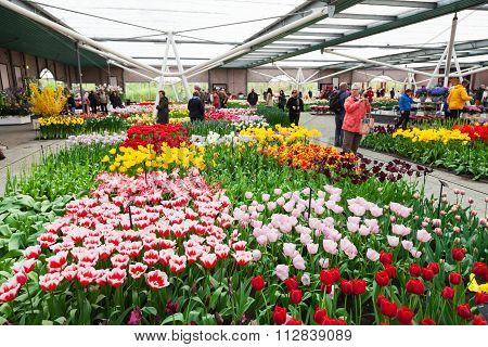 Tourists visiting the Keukenhof Gardens
