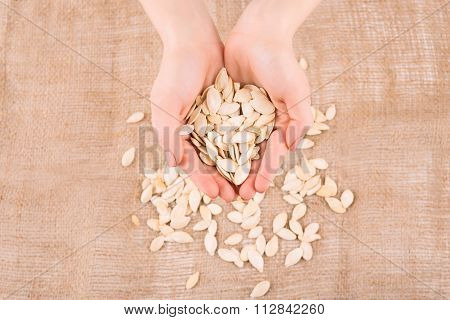 Human hands filled with pumpkin seeds.