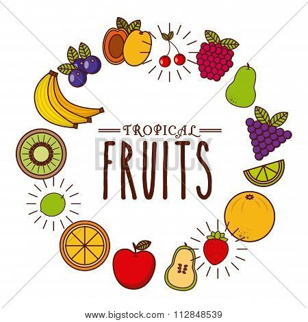tropical fruit design
