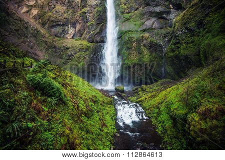 Mossy Oregon Waterfall