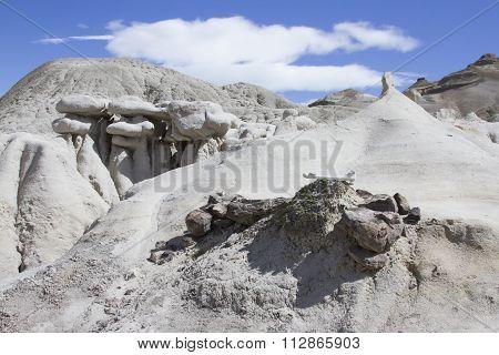 Dinosaur Bones In La Leona Petrified Forest, Argentina