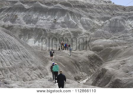 Tourists In La Leona Petrified Forest