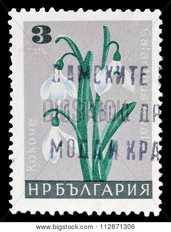 Bulgaria 1966