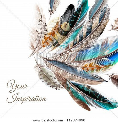 Fashion  Vector Background With Blue White And Brown  Feathers In Realistic Style