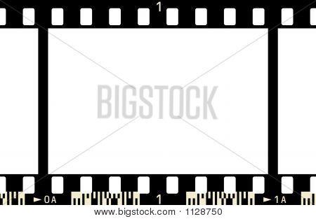 Film Frame (Negv2_1F_E_Yn_Yc)