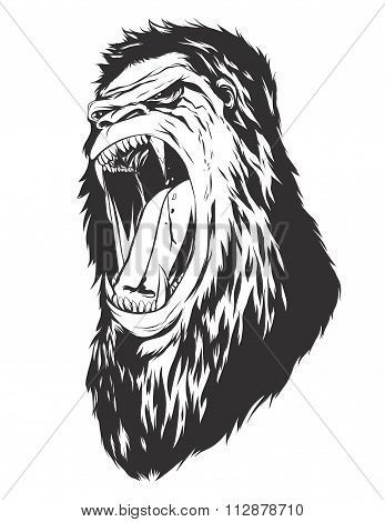 Vector Illustration With Monkey Head
