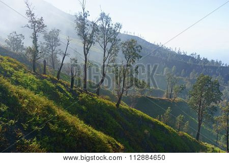 Misty mountain ridge with blue sky background.