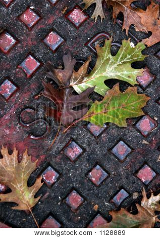 Leaves And Squares