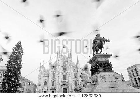 Milan Cathedral_duomo Di Milano