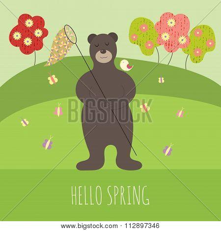 Hello spring bear