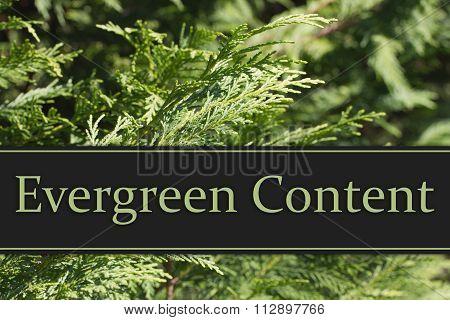 Evergreen Content Message
