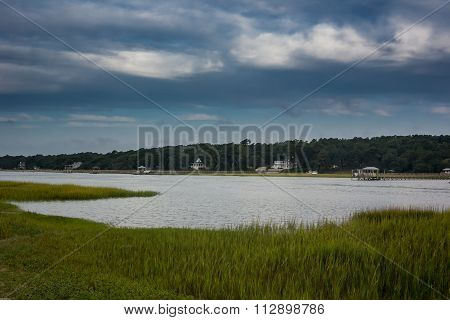 Grasses Along Inlet Marsh