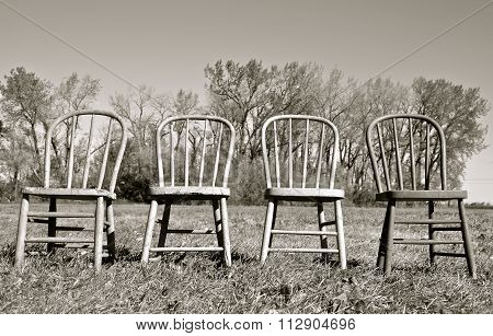 Four Windsor backed chairs(black and white)