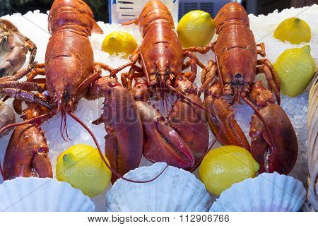 The Seafood Lobsters.