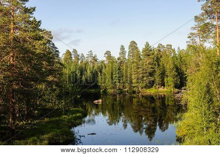 Small Forest Lake In Karelia