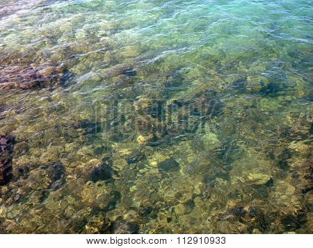 Surface Water Ripples With Coral Below