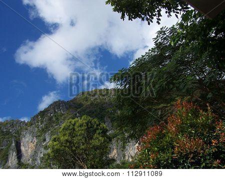 Palawan Island hillside