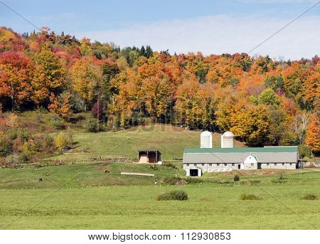 Beautiful farm in Vermont during the fall