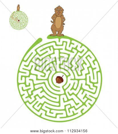 Maze, Labyrinth education Game for Children with Marmot and Nut.