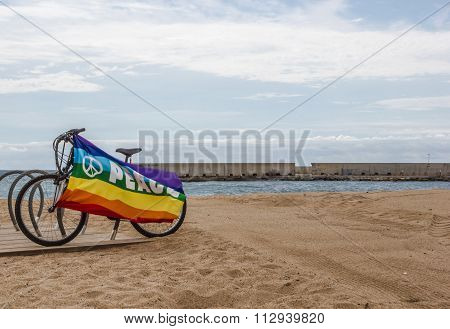 Gay and lesbian community flag on bicycle near the sea