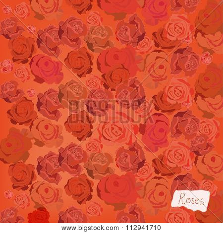 editable vector image Roses