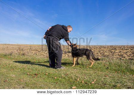Dog bites the hand