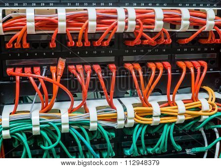 Close Up Of Assorted Network Cables Connected To Switch