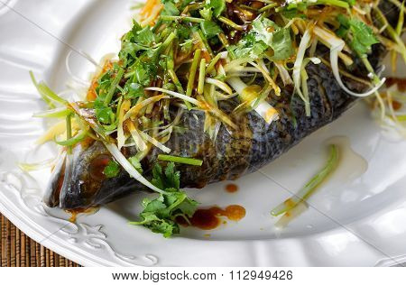 Steamed Fish And Garnishes On White Serving Plate Ready To Eat