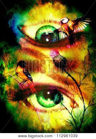 green godness women eye with birds on multicolor background eye contact with mandala linear ornament
