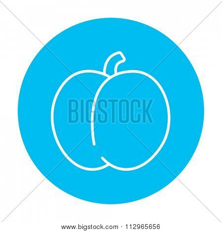 Plum with leaf line icon for web, mobile and infographics. Vector white icon on the light blue circle isolated on white background.