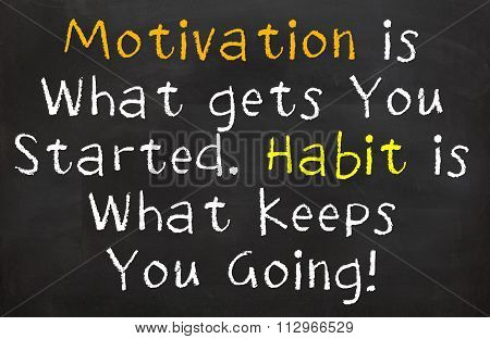 Motivation and Habits