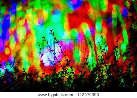 Blur abstract bokeh out of focus background of christmaslight new year silhouette tree