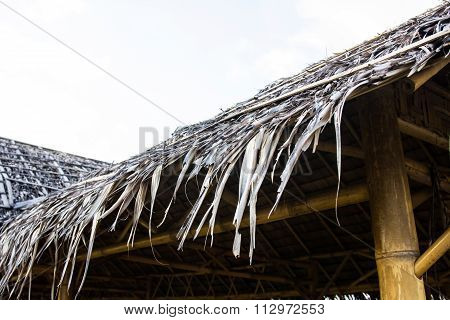 Roof Made Of Sago Leaves.